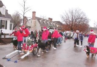 Dog Grooming Services Hampton Va