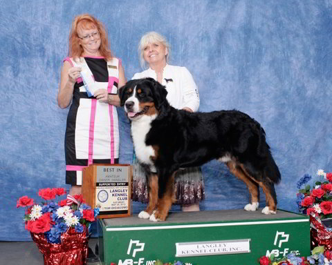 Langley Kennel Club Dog Show 2012