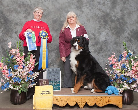 Potomac Valley Bernese Mountain Dog Specialty Show 2013 - High in Trial