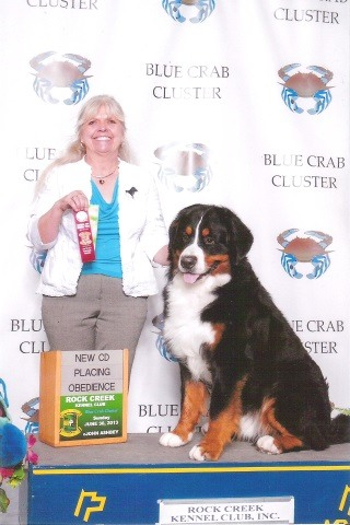 2013 Rock Creek Kennel Club Dog Show - Second Place: Novice A Obedience (CD Title)