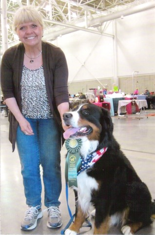 2014 Bernese Mountain Dog Club of America Dog Show Rally Advanced Title
