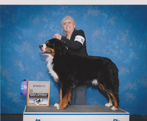 2015 Middle Peninsula Kennel Club Dog Show Winners Dog