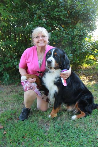 2015 Chesapeake Dog Fanciers Dog Show: First Place: Winners Dog