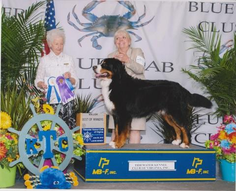 2015 Tidewater Kennel Club Dog Show:  Best of Winners