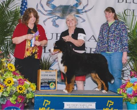 2015 Southern Maryland Club Dog Show:  Reserve Winners Title