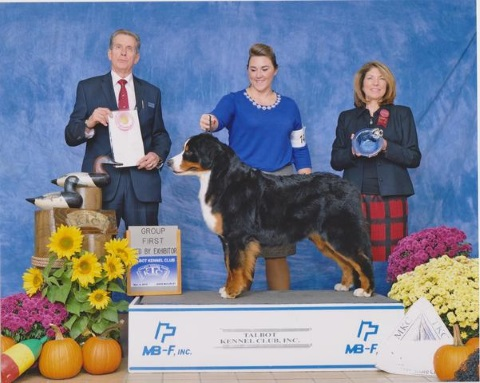 2015 Talbot Kennel Club Dog Show:  First Place: Bred By Exhibitor Class