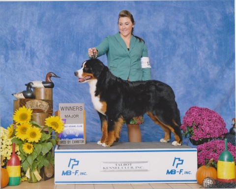 2015 Talbot Kennel Club Dog Show:  Winners Major