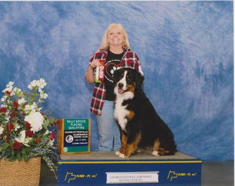 2016 Charlottesville-Albermarle Kennel Club Rally Novice Placing Qualifying Award for Destiny