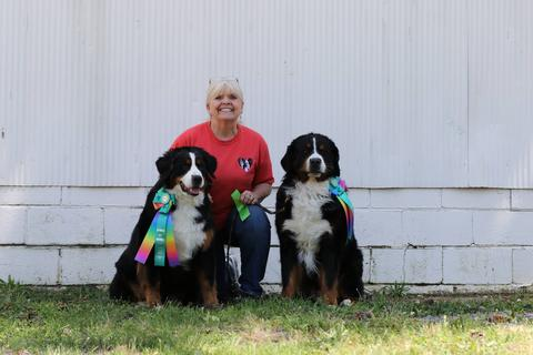 2016 Richmond Dog Obedience Dog Club New Title Award for Destiny