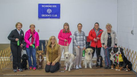 2019 Richmond Dog Obedience Club Destiny, Martini, and Teresa