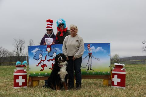 2018 Draft Dog Test in Lovettsville, Virginia (4)